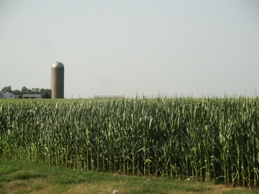 All-American scene of farmhouse and cornfields in, I believe, Independence, Iowa from July 4th, 2012
