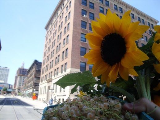 white currants and sunflowers from the St. Paul Farmers Market, in front of the Northwestern Building